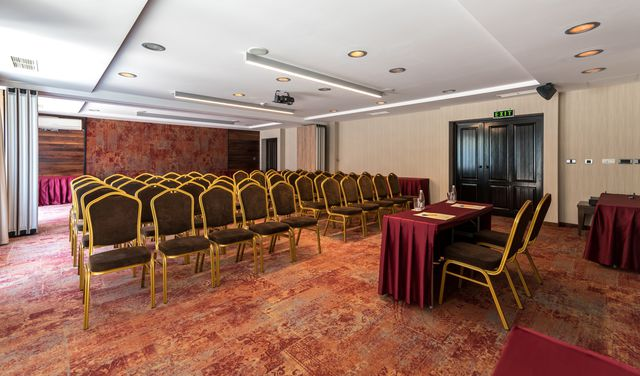 Lion Borovets Hotel - Business facilities