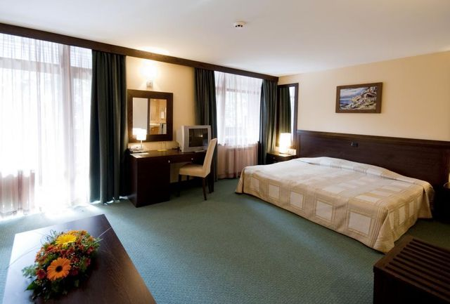 Lion Borovets Hotel - Twin large room